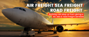 International courier services near me